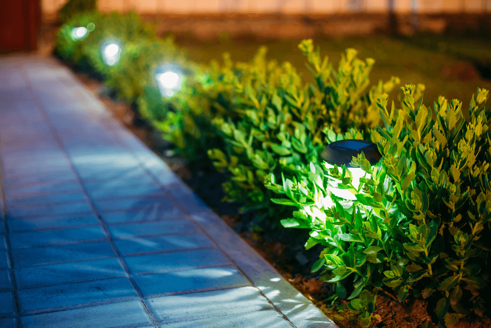 outdoor garden LED lighting mi