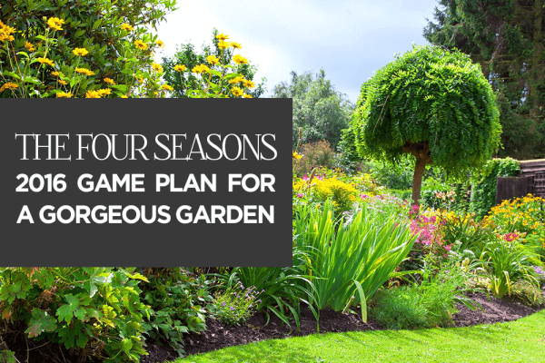Your 2016 Landscaping Game Plan