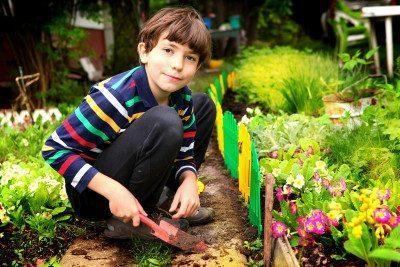 vegetable herb garden kids mi
