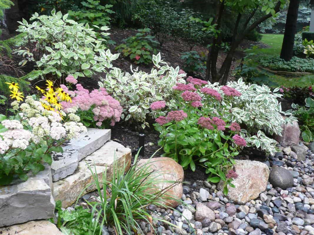 Landscaping Ideas Rocks And Bricks Stones Oh My
