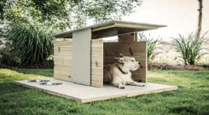 dog house dog scaping